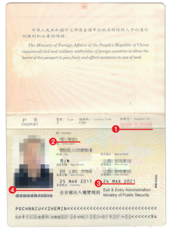 埃及签证材料护照模板